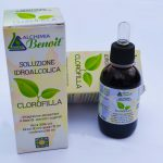 foto-clorofilla