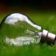 Energia della fotosintesi