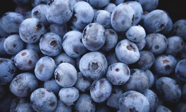 Alimenti Bionutrizione
